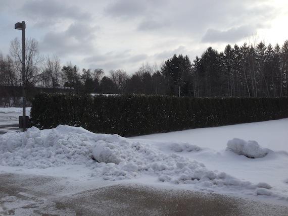 snow_redeemer