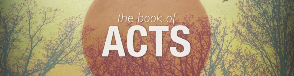 Chapter-by-Chapter Bible Studies Acts - kathleendalton